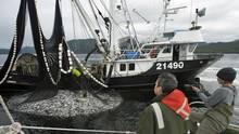 bc-herring-fishery23